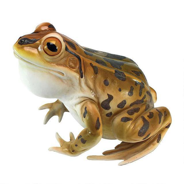 Lester the Leopard Frog statue